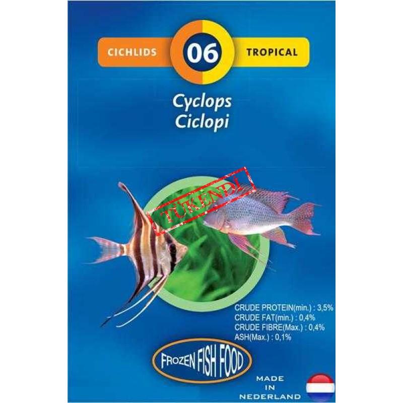 Dondurulmuş Zooplankton
