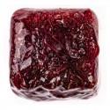 Dondurulmuş Kan Kurdu